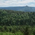 Красноярские столбы: панорама тайги